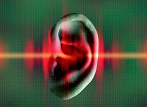 4.Sınıf Ses Kirliliği Konusu Soru ve Cevapları