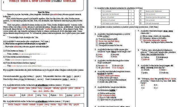 İlkokul 4.Sınıf Türkçe 1. Dönem 2. Yazılı Soruları ve Cevap Anahtarı